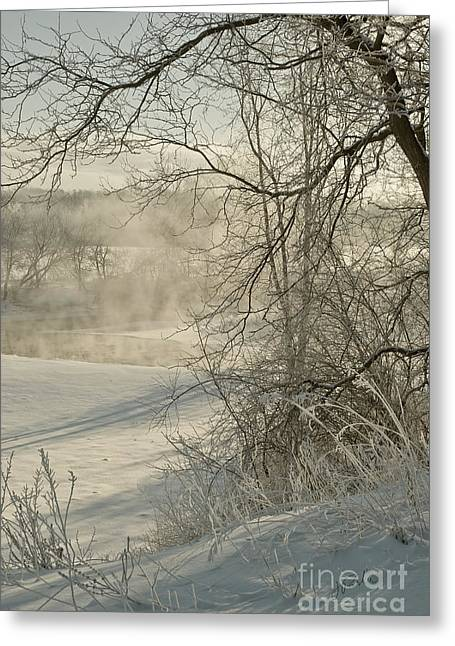 Winter Romance IIi Greeting Card by Jessie Parker