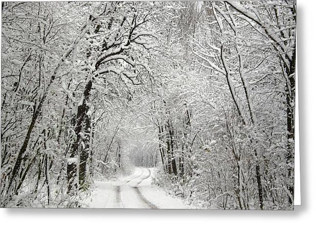 Winter Scene 2 Greeting Card
