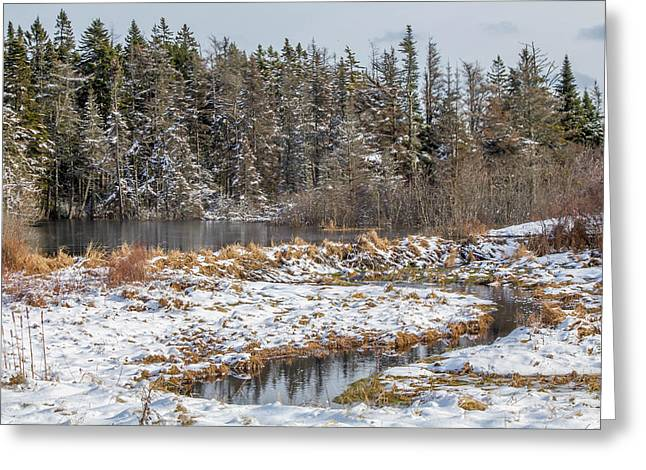 Winter Scene Maine  Greeting Card