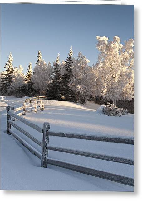 Winter Scenic Of Split Rail Fence And Greeting Card by Jeff Schultz