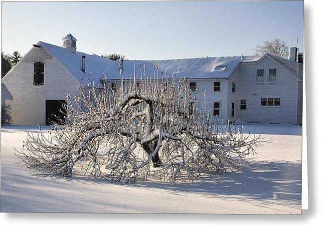 Winter Sculpture Greeting Card