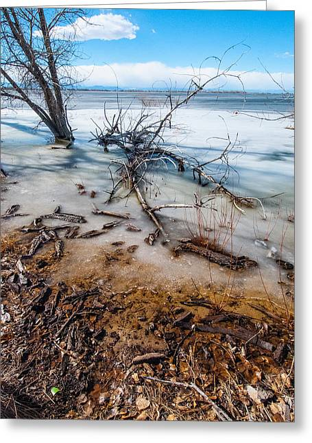 Winter Shore At Barr Lake_2 Greeting Card