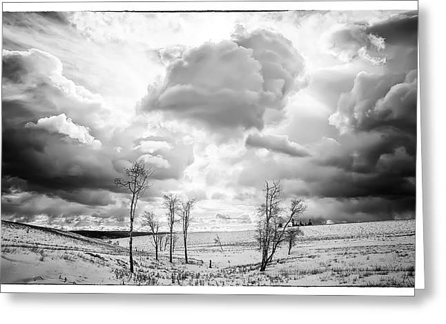 Winter Sky Drama Greeting Card by Theresa Tahara