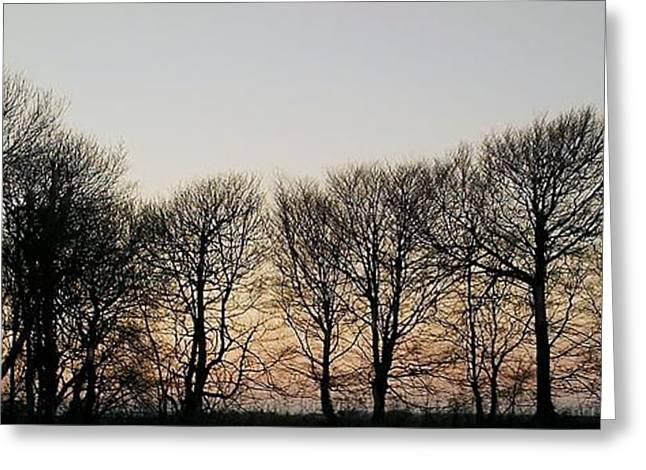 Winter Skyline Greeting Card by Richard Brookes