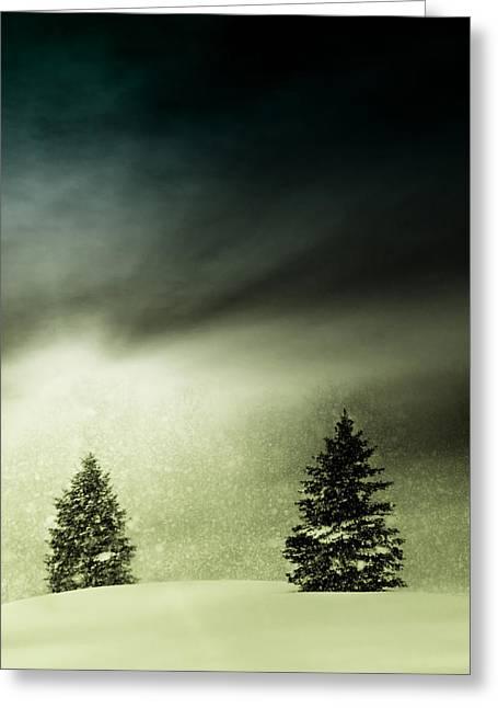 Winter Snow Globe Greeting Card by Michael Huddleston