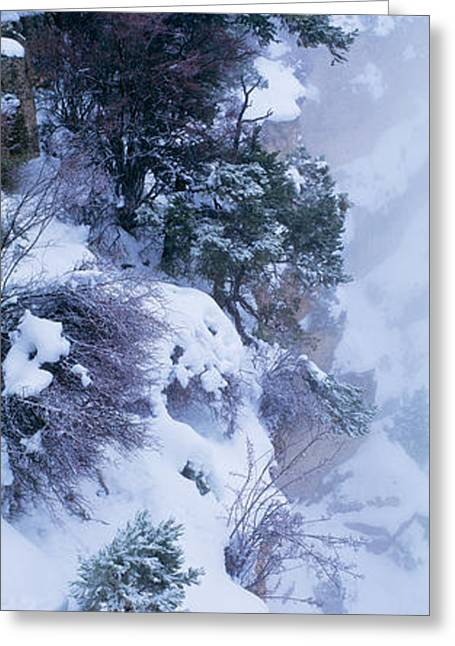Winter Snow Storm Grand Canyon Rim Greeting Card by Panoramic Images