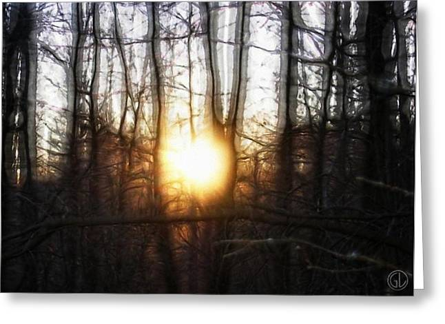 Winter Solstice Greeting Card by Gun Legler