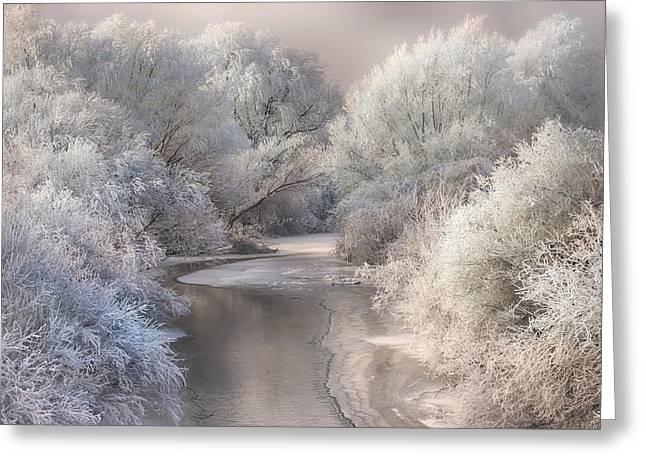 Winter Song Greeting Card by Sebestyen Bela