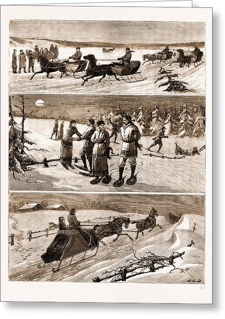 Winter Sports At Halifax Greeting Card by Litz Collection
