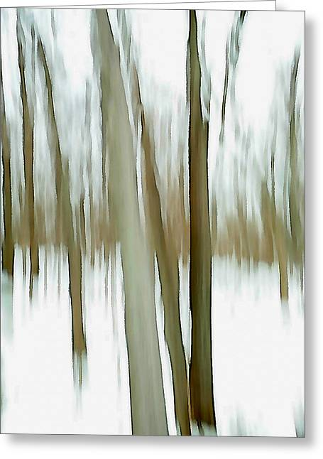Greeting Card featuring the photograph Winter by Steven Huszar
