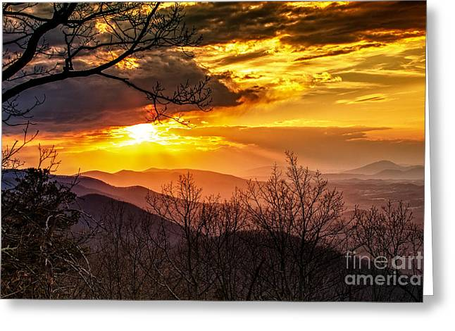 Winter Sun Greeting Card by Mark East
