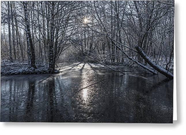 Winter Sun Rays Greeting Card