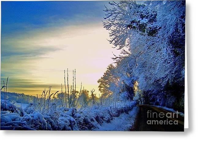 Winter Sunburst Greeting Card by Nina Ficur Feenan