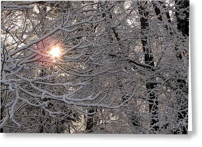 Winter Sunrise Greeting Card by Greg Simmons