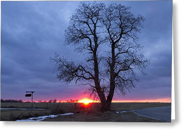 Winter Sunset Greeting Card by Eric Mace