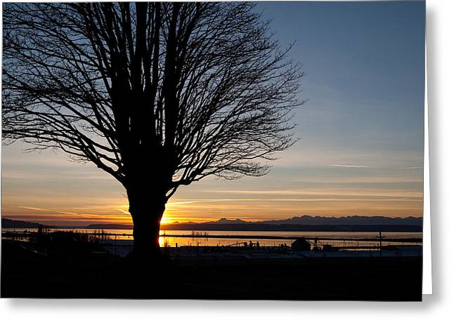 Greeting Card featuring the photograph Winter Sunset by Erin Kohlenberg