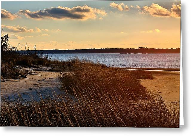 Winter Sunset On The Cape Fear River Greeting Card