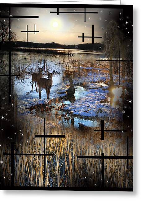 Winter Swamp Evening Greeting Card by Andrew Sliwinski