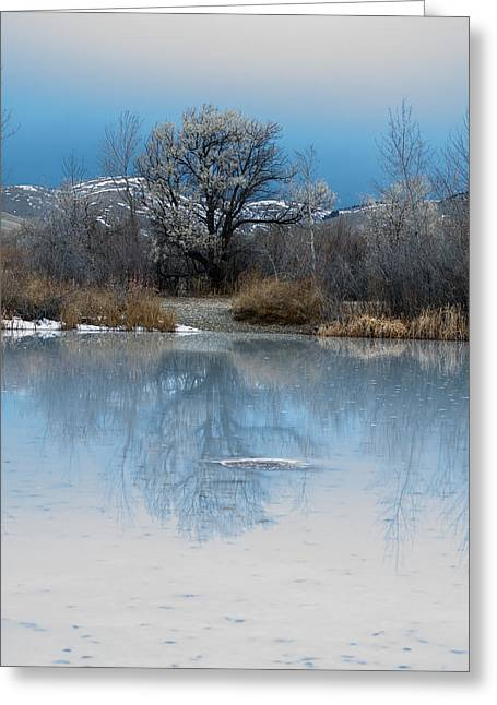 Winter Taking Hold Greeting Card