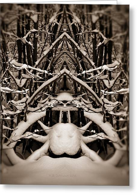 Greeting Card featuring the photograph Winter Temple by WB Johnston