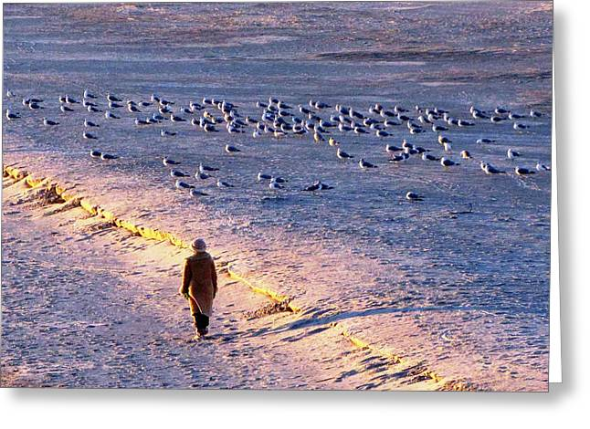 Greeting Card featuring the photograph Winter Time At The Beach by Cynthia Guinn