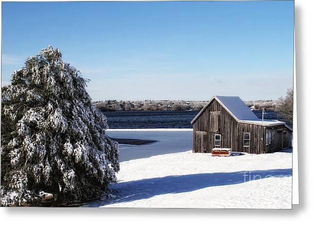 Greeting Card featuring the photograph Winter Time by Gina Cormier