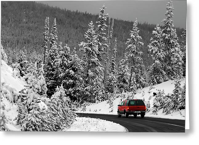 Greeting Card featuring the photograph Winter Traveler by Geraldine Alexander