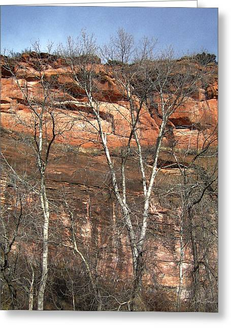 Winter Trees And Red Mountain Greeting Card by Julie Magers Soulen
