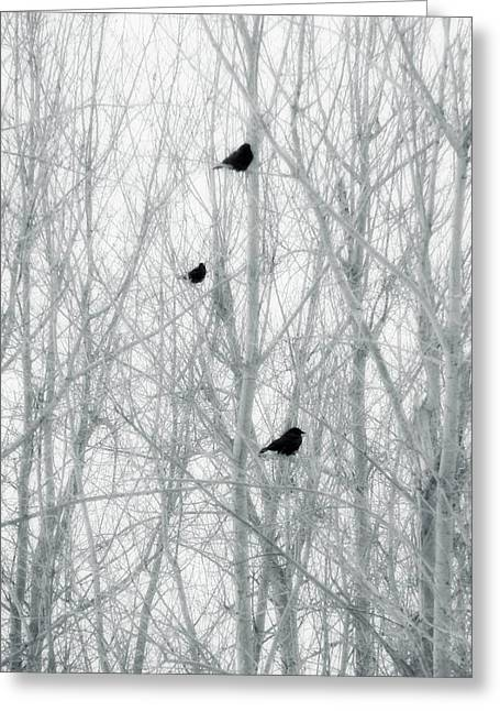 Abstract Crows In Winter Trees Greeting Card