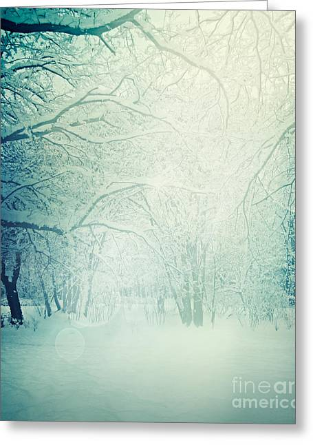 Winter Trees Greeting Card by Mythja  Photography