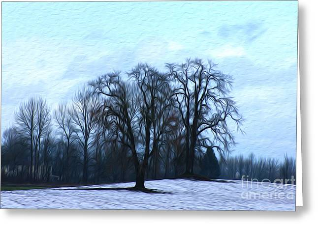 Winter Trees Greeting Card by Nur Roy