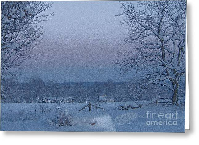 Winter Trees On West Michigan Farm At Sunrise Greeting Card