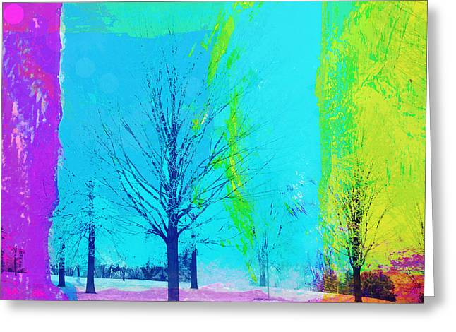 Winter Trees Greeting Card by Susan Stone