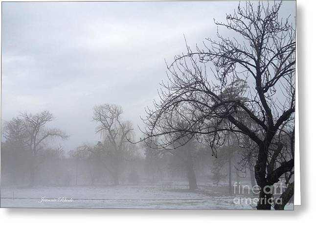 Greeting Card featuring the photograph Winter Trees With Mist by Jeannie Rhode