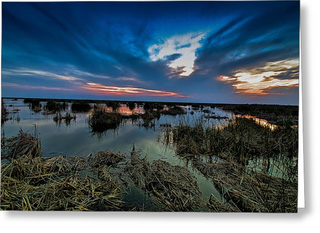 Winter Twilight At Anahuac Wildlife Refuge  Greeting Card