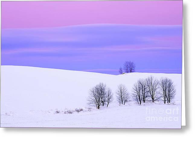 Winter Twilight Landscape Greeting Card