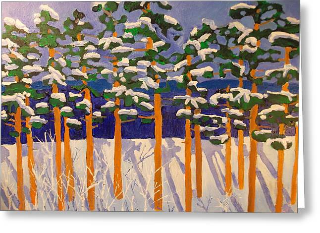 Winter Valley Greeting Card by Rodger Ellingson