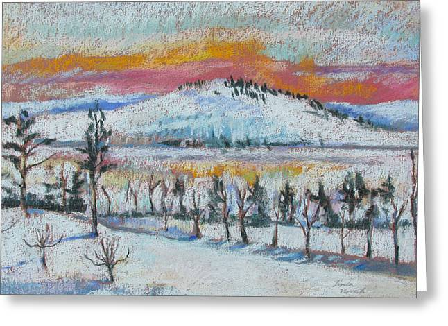 Winter View From Kripalu Greeting Card