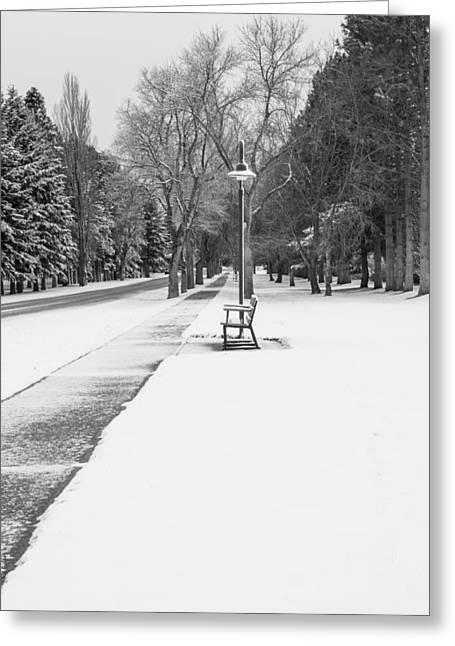Winter Walk Greeting Card by Fran Riley