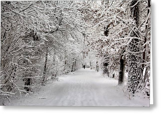 Winter Walk In Fairytale  Greeting Card