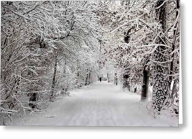 Winter Walk In Fairytale  Greeting Card