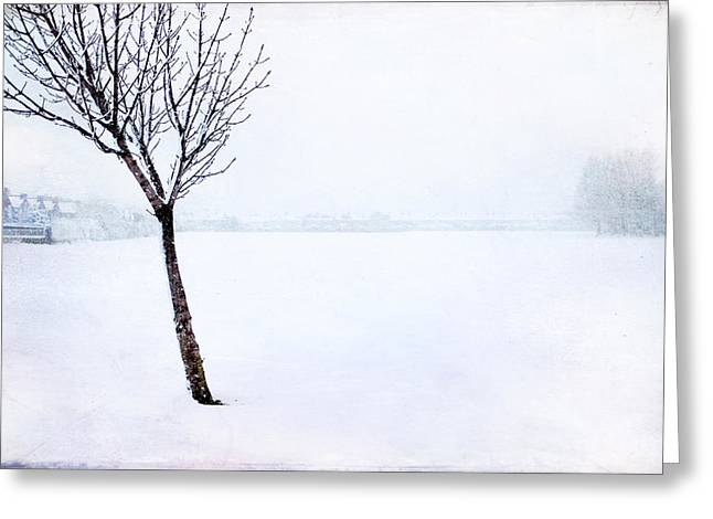 Winter Whiteout Greeting Card