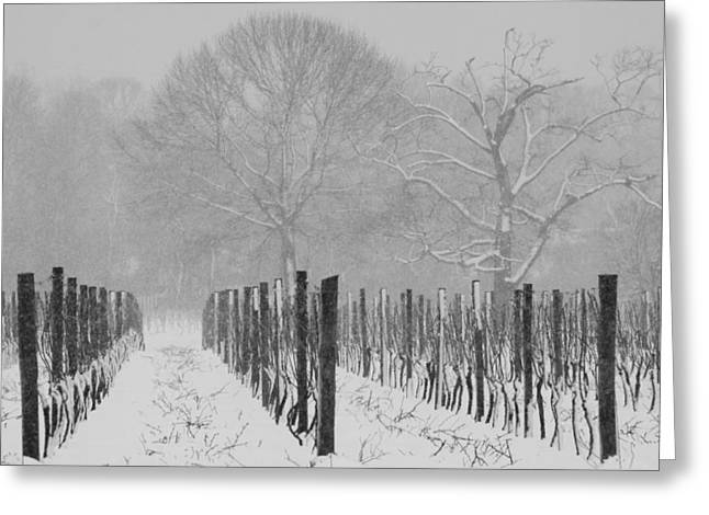 Winter Wine Greeting Card