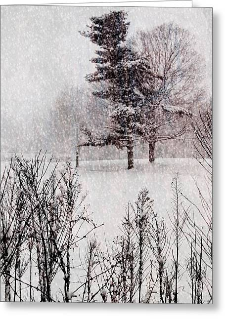 Winter Wonder 2 Greeting Card by Maria Huntley