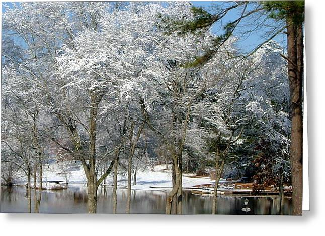 Greeting Card featuring the photograph Winter Wonder Land Of Mine by Tanya Tanski