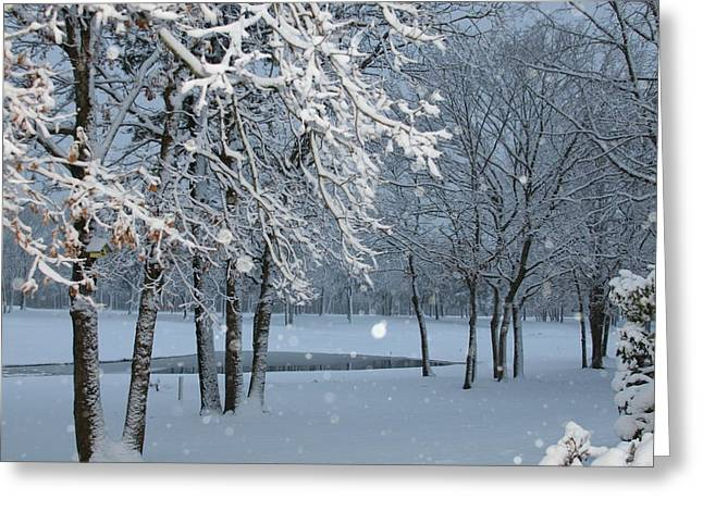 Winter Wonder Land Greeting Card by Paul SEQUENCE Ferguson             sequence dot net