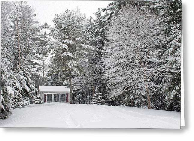 Greeting Card featuring the photograph Winter Wonderland by Barbara West