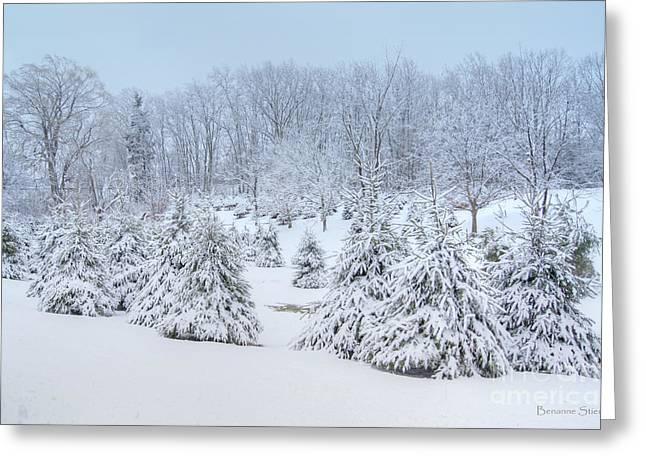 Winter Wonderland In West Virginia Greeting Card