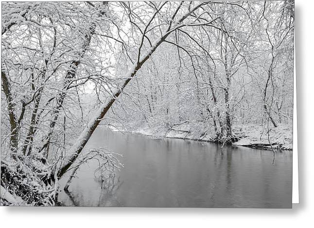 Winter Wonderland Greeting Card by Brian Stevens