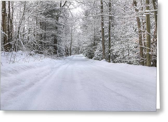 Winter Wonderland Greeting Card by Donna Doherty